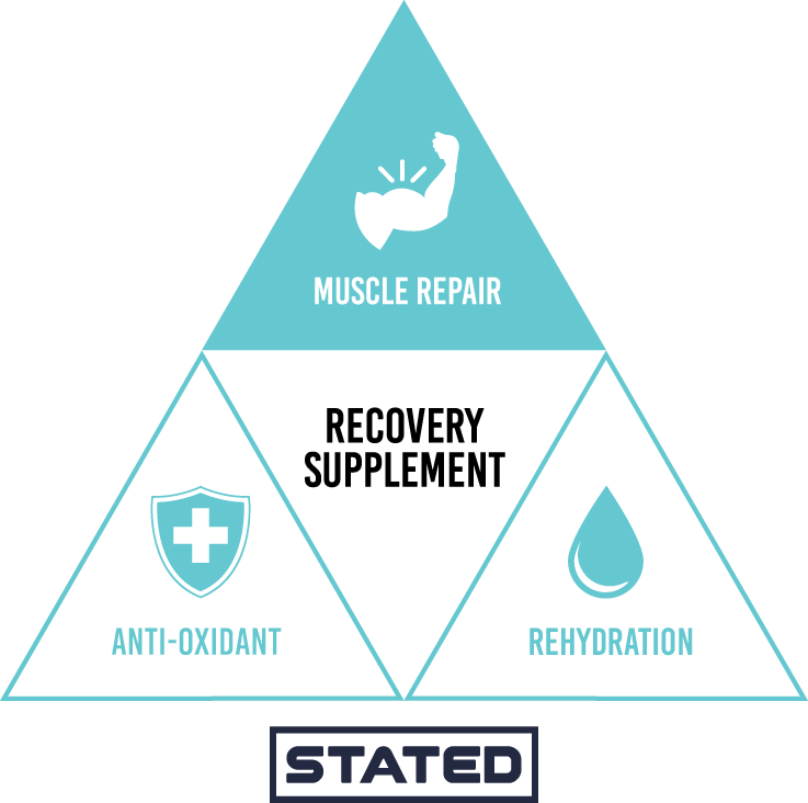 Recovery Muscle Repair